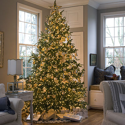 How to extend the life of your christmas tree tommy ellie solutioingenieria Image collections