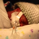 "Joseph ""Tucker"" 3 Weeks Old - 1040 Grams - 2lbs 5oz"