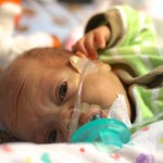 Nasal Cannula. 2515grams. 10.17.2012_8